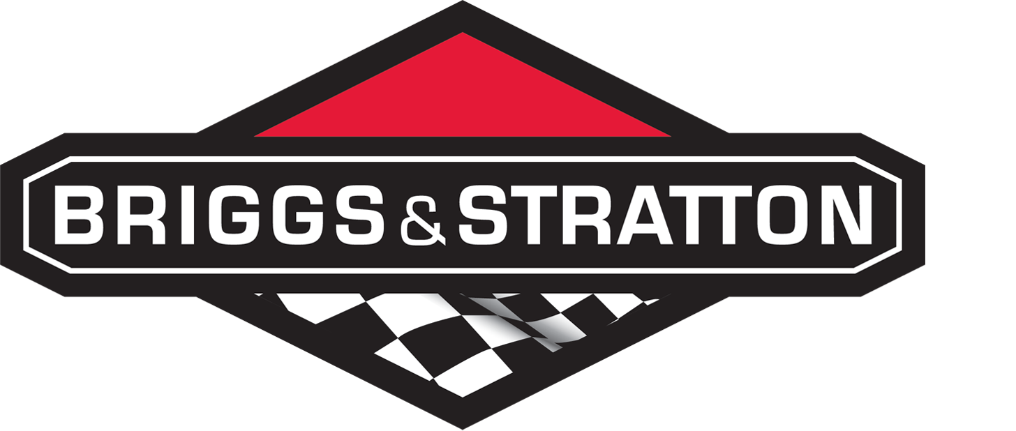 Briggs and Stratton Racing with Product41.com